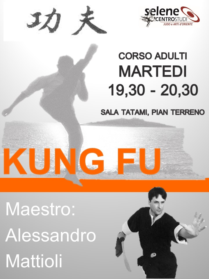 kung fu - banner